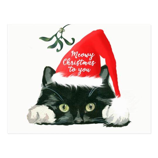 meowy christmas holiday cat santa hat postcard