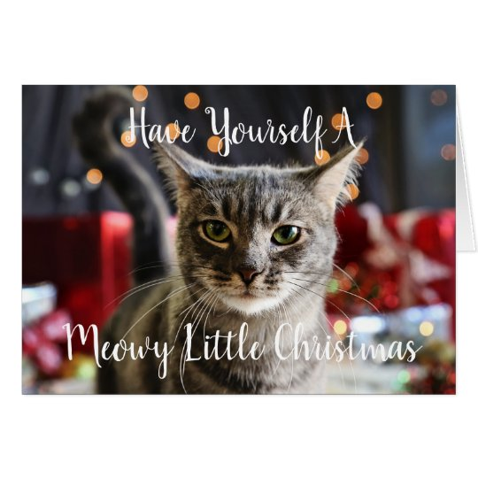 Meowy Little Christmas Greeting Card