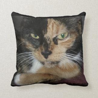 Mercedes Snuggle pillow