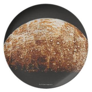 Mercury Plate