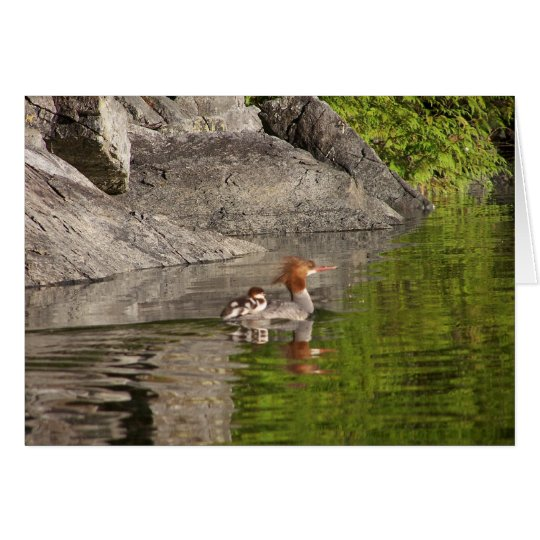 Merganser and Babies Card