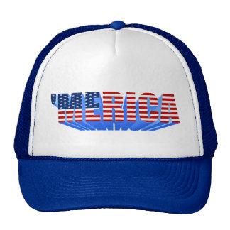 'MERICA 3D US Flag Hat (blue)