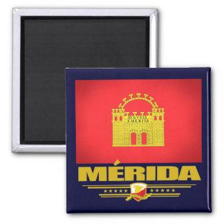Merida Square Magnet