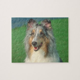 Merle Rough Coat Collie Dog Puzzle