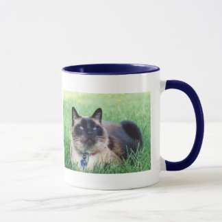 Merlin Blue Memorial Mug