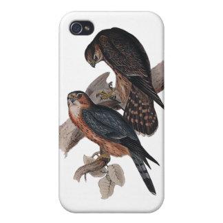 Merlin iPhone 4 Cases
