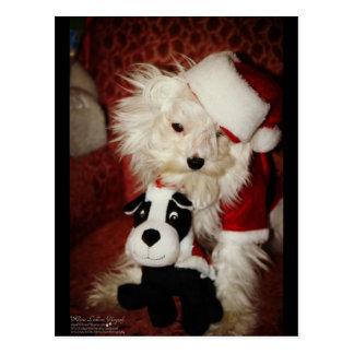 """Merlin Meets """"Santa and his Reindeer"""" Postcard"""