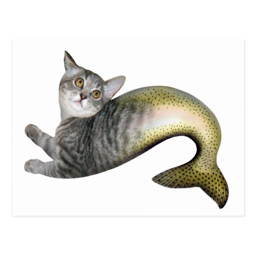 Mermaid Cat Post Cards