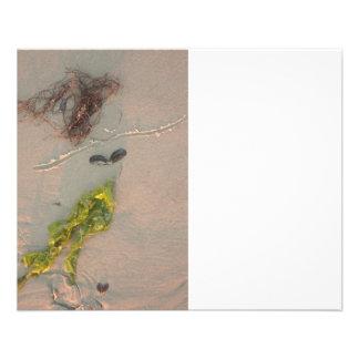 Mermaid in the Sand 11.5 Cm X 14 Cm Flyer
