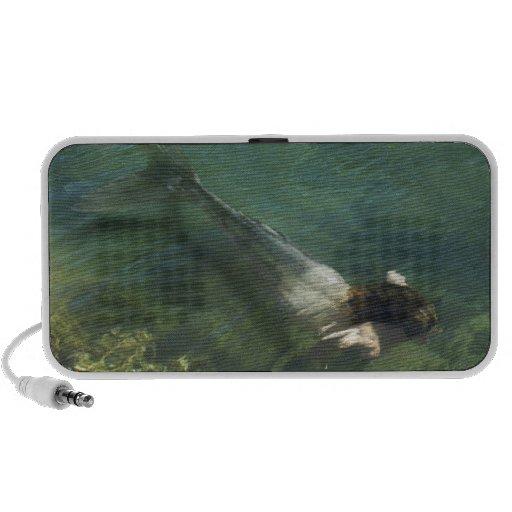 Mermaid swimming underwater travel speakers