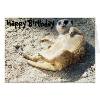 Merrkat Happy Birthday Card