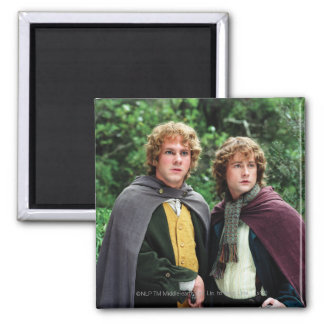 Merry and Peregrin Magnet