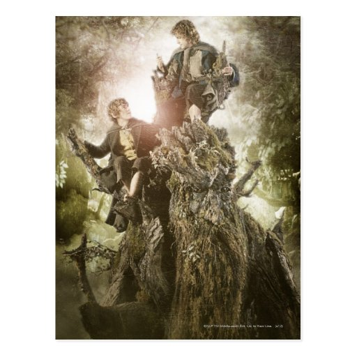 Merry and Peregrin on Treebeard Postcards