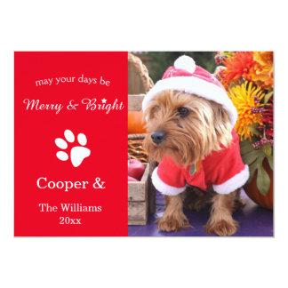Merry & Bright Custom Christmas Pet Photo Card