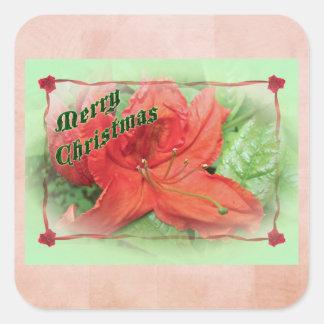 Merry Christmas Azalea Square Sticker