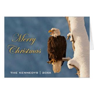 Merry Christmas - Bald eagle perched on - Alaska Card