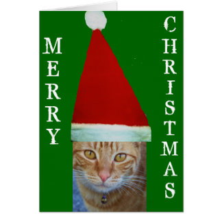 Merry Christmas_Card Card