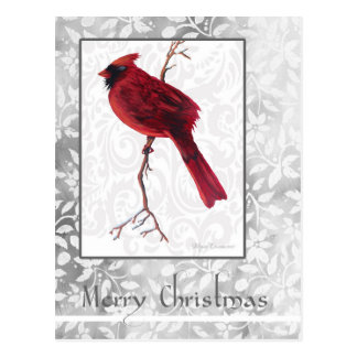 Merry Christmas Cardinal Postcard