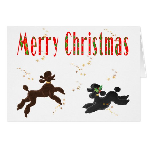 Merry Christmas Chocolate & Black Poodles Playing Greeting Cards