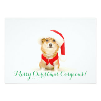 Merry Christmas Corgeous Card