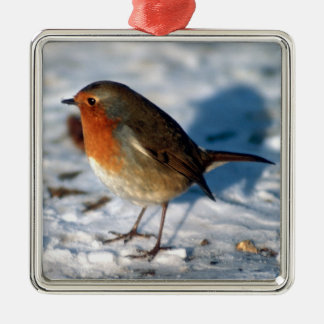 Merry Christmas Cute Little Robin in the Snow Christmas Ornament