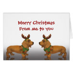Merry Christmas Dachshunds