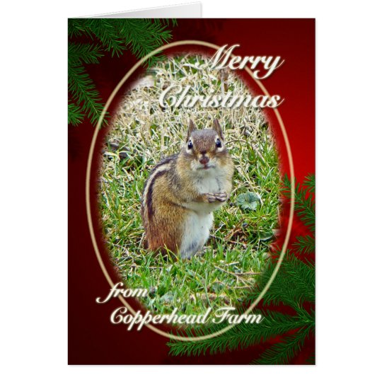 Merry Christmas Eastern Chipmunk For Dolores Card