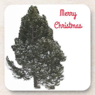 Merry Christmas Evergreen - Coaster