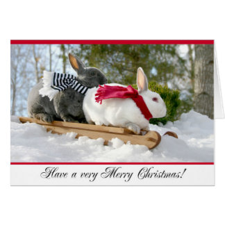 Merry Christmas Fluffy Bunny Card