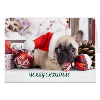 Merry Christmas French Bull Card