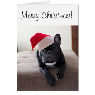 Merry Christmas Frenchie Card
