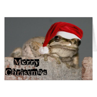 Merry Christmas Frog Card