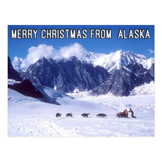 Merry Christmas from Alaska Postcard