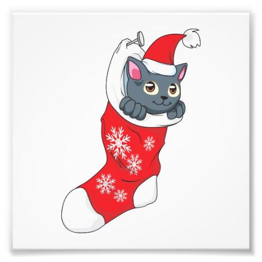 Merry Christmas Gray Kitten Cat Red Stocking Grey Photo Print