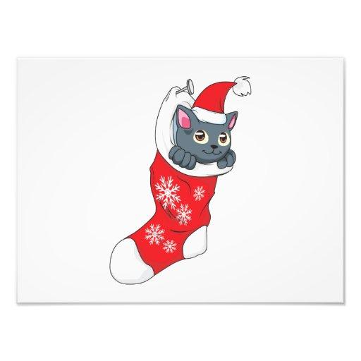 Merry Christmas Gray Kitten Cat Red Stocking Grey Photo Art