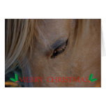 Merry Christmas Happy Holidays Christmas horse Greeting Cards