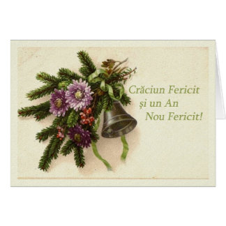 Merry Christmas Happy New Year in Romanian Greeting Card