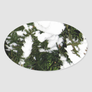 Merry Christmas  Holiday celebrations Santa Christ Oval Sticker
