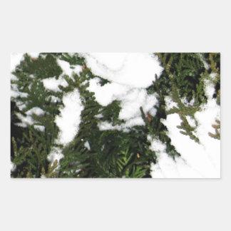 Merry Christmas  Holiday celebrations Santa Christ Rectangular Sticker