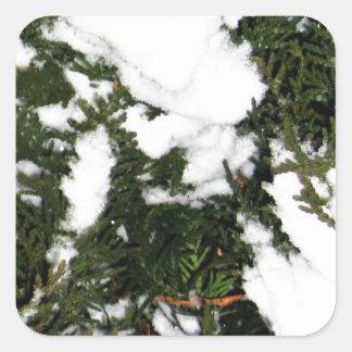 Merry Christmas  Holiday celebrations Santa Christ Square Sticker