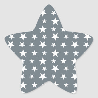 Merry Christmas  Holiday celebrations Santa Christ Star Sticker