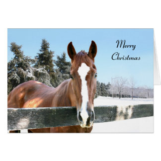 Merry Christmas horse Card