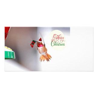 Merry Christmas Hummingbird Photo Card