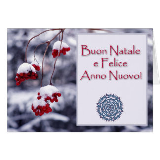 Merry Christmas in Italian Card