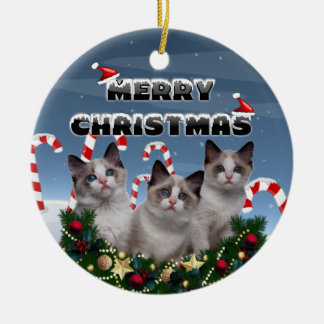Merry Christmas Kittens in Candy Cane Land Christmas Ornament