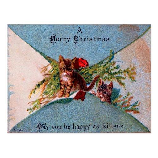 MERRY CHRISTMAS KITTENS ~