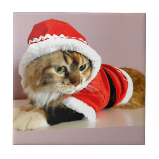 Merry Christmas kitty cat Santa suit Tile