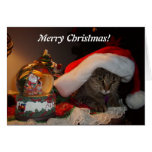 Merry Christmas Kitty! Greeting Card