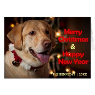 Merry Christmas - Labrador Retriever Bell Collar Card