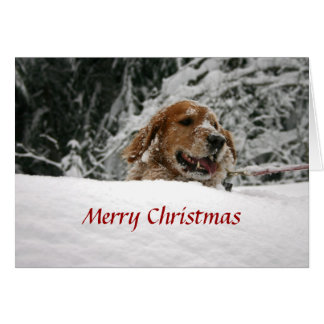 Merry Christmas -Let it Snow Note Card
